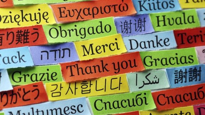 cover languages
