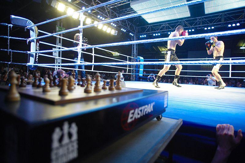 عکس کاور شطرنج - بوکس