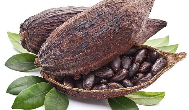 cover cocoa
