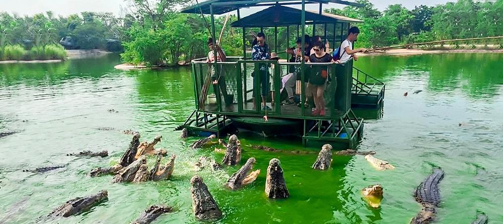 elephant kingdom in chonburi, thailand